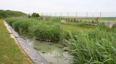 Larbaletier-bassin-filtrage